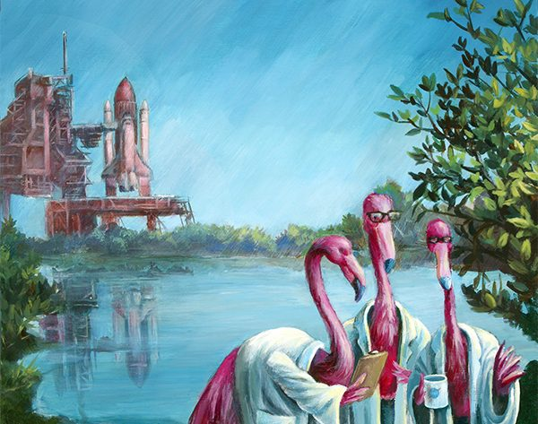 If Flamingos Ran NASA…