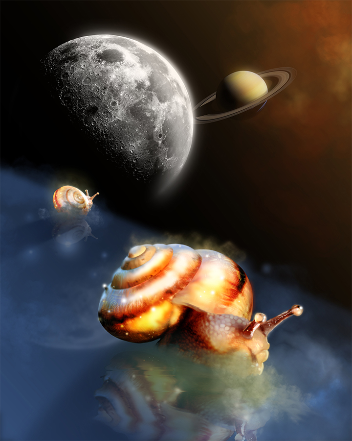 """Featured image for """"Space Snails"""""""